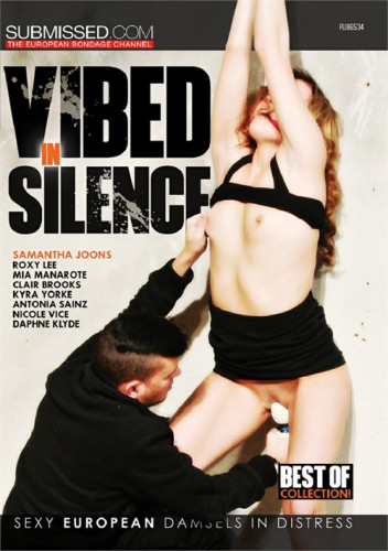 Vibed in Silence [BDSM]