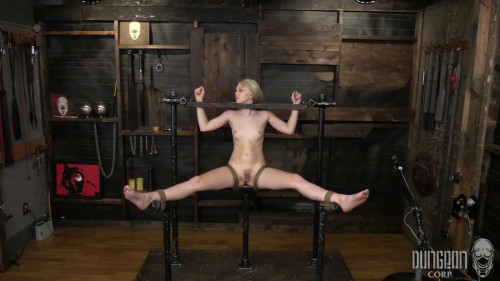 Lily Rader - Suffering for Rare Beauty [BDSM,SocietySM / DungeonCorp,Lily Rader,60fps,Toys,Teen]