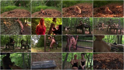 SexuallyBroken - September 23, 2013 - Darling - Hazel Hypnotic - Matt Williams - Jack Hammer