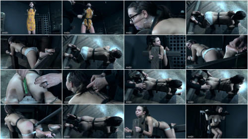 Bondage Knockout - Shae Celestine