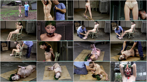 Vesper Leashed, Paraded, Strung Up, and then Hogzipped