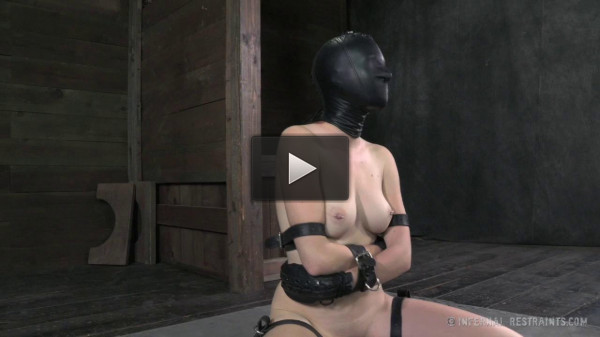 Whipped, Bound and Boxed - Ashley Lane...