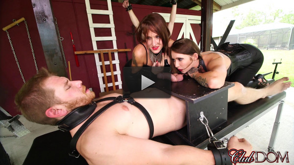 Mistresse Milking Humiliation - porn, fan, video...