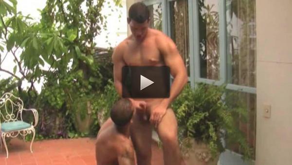 Muscle Males Fuck At Favela
