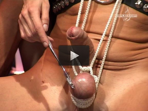 Best of Domina Session - enjoy, download, watching!