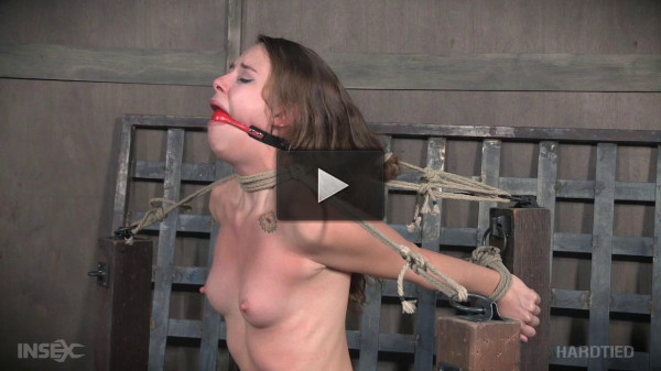 Tickle Whipped (humiliation, download, model, vibrator)