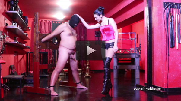 Mistress Iside — Destroyed Balls and Erected Cock