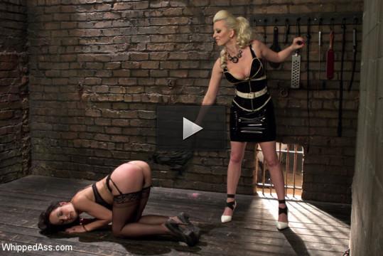 Naughty Video