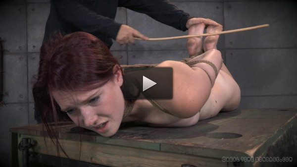 Cunt Puppy Part 2 - Ashley Lane - spa, domina, toes.