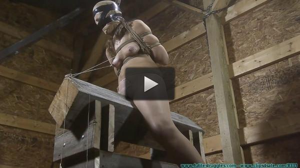 Hard bondage, torture, strappado and hogtie for slave bitch