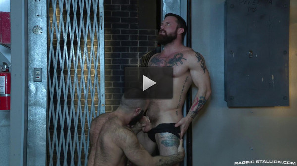 RagingStallion — Sergeant Miles and Teddy Bear