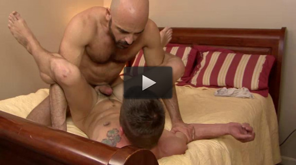 Amazing Bears In Anal Collection