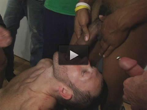 Born to sucking orgy
