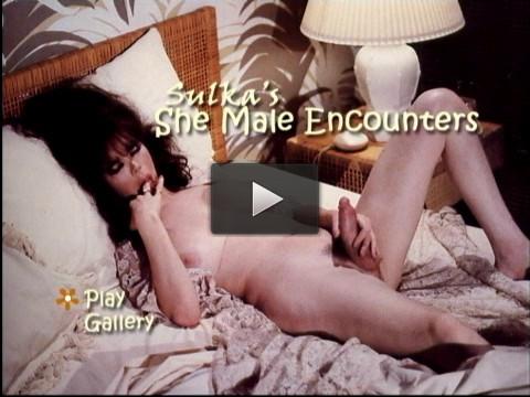 Sulka's She Male Encounters - trans, retro, online, show