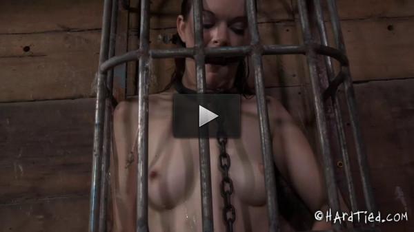 Sasha, Hazel Hypnotic (tit, enjoy, online, download, video)