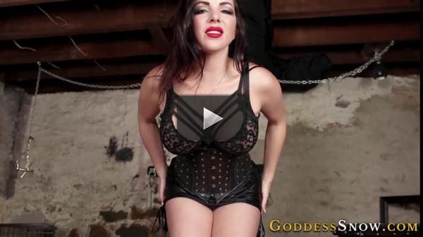 Goddess Alexandra Snow — Beta Male Envy